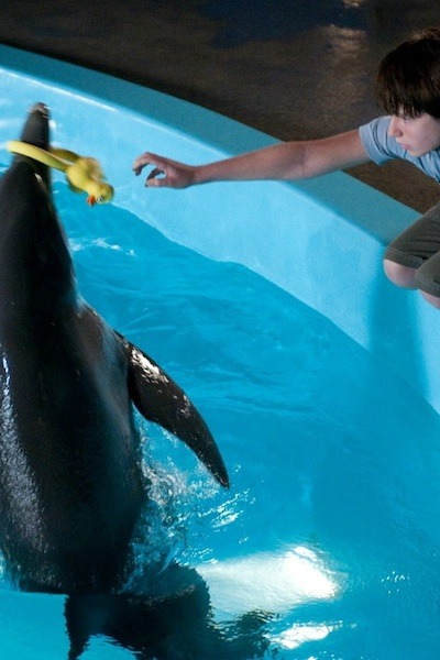 No. 10 -- Dolphin Tale