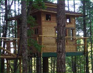 Treehouse Paradise - Southern Oregon - Cabin