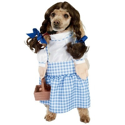 Wizard of Oz Pet Costume