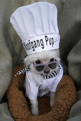 Wolfgang Pup on the scene.