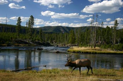 Yellowstone National Park, Idaho, Wyoming, & Montana