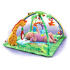 Fisher-Price Rainforest Melodies and Lights Deluxe