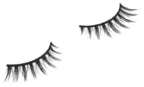 Little Flirt Lash