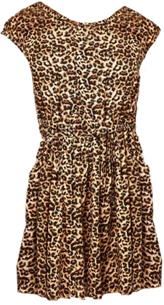 Animal print dress