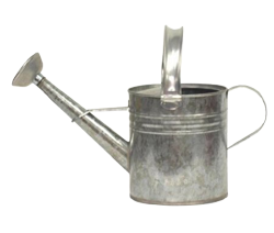 Steel Watering Can, Silver