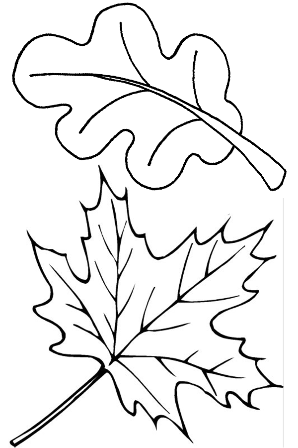 Autumn Coloring pages Fall leaves