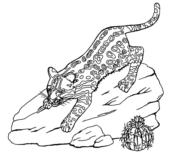 Ocelot Coloring Page Free Printable Coloring Pages Ocelot Coloring Page