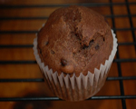 Brownie Bran Muffins