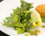Chicory, Edamame and Arugula Salad