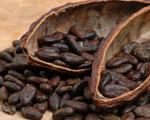 Cocoa Cinnamon Spice Tea Blend