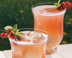 Cranberry Lemon Spritzer