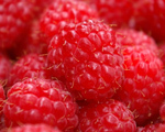 Drunken Raspberries
