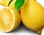 Lemon Bishop