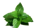 Nonalcoholic Mint Julep