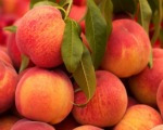 Healthy baby purees: Peach