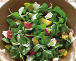 Pickled Beet, Arugula and Ricotta Cheese Salad