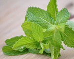 Spearmint Marinade