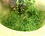 Tarragon Pesto