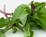 Thai Basil Syrup