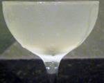 The Holland House Cocktail