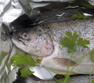 Wine Steamed Trout in Foil