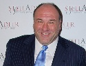 <em>Sopranos</em> star James Gandolfini dead at 51
