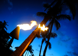 Citronella Tiki Torches