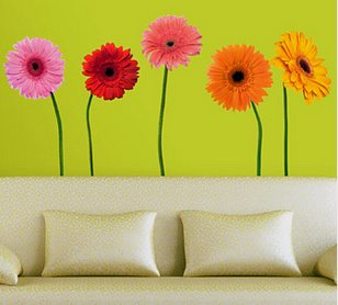 Brightly-colored daisies