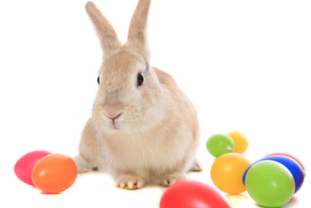 How long should kids believe in the Easter Bunny?