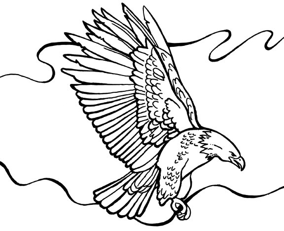Bald Eagle coloring page - Free Printable Coloring Pages