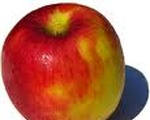 Apple Nut Pudding