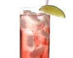 Bay Breeze Cocktail