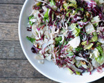 Fennel and Radicchio Salad with Pecans