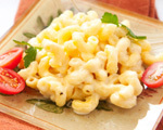 Probiotic Rich Macaroni & Cheese