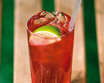 Summer Beefeater and Cranberry Cocktail